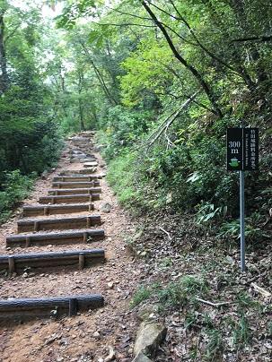 竹田城登山道残り300m付近