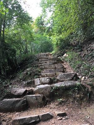 竹田城登山道残り100m付近
