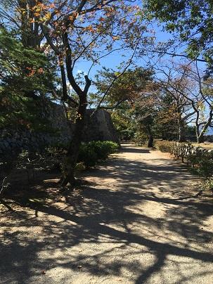 松坂城城郭内の景色