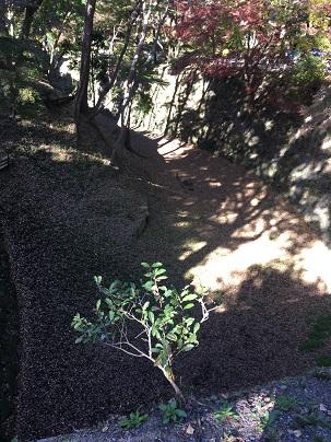 岡崎城本丸の堀