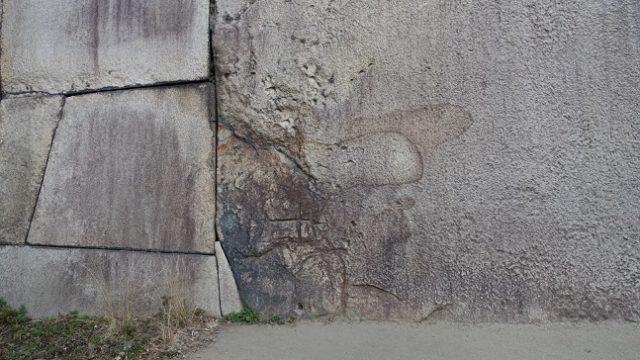 大阪城蛸石のシミ