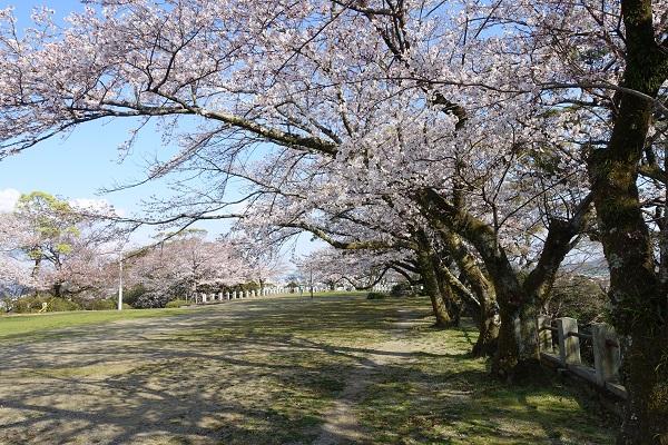 徳島城本丸