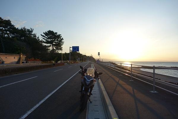 桂浜花海道