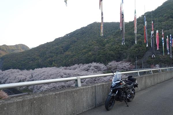 鳥ノ瀬ダムダム上から