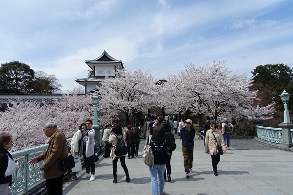 兼六園から金沢城へ