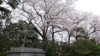前田利家公と桜