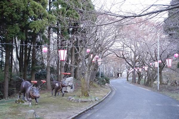 倶利伽羅県定公園と牛