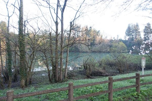 上和田緑地キャンプ場湖畔