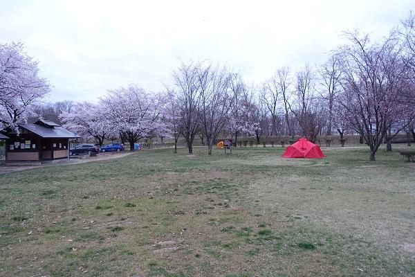 かじかの里公園キャンプ場キャンプ場サイト