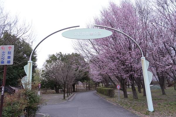 かじかの里公園キャンプ場入口付近