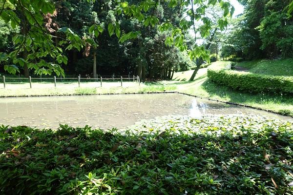 山中城田尻の池