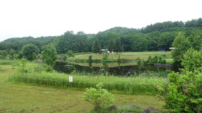 キャンプ場内中央には池
