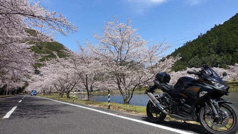 下北山スポーツ公園(奈良県)