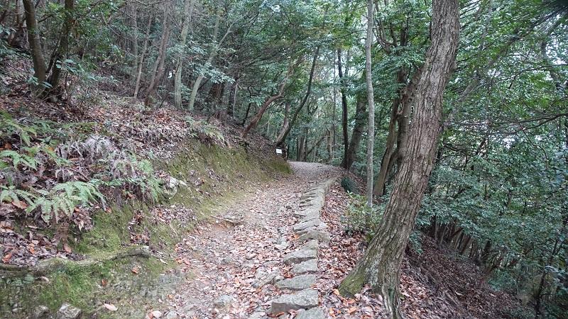 ロープウェイ分岐後の山道