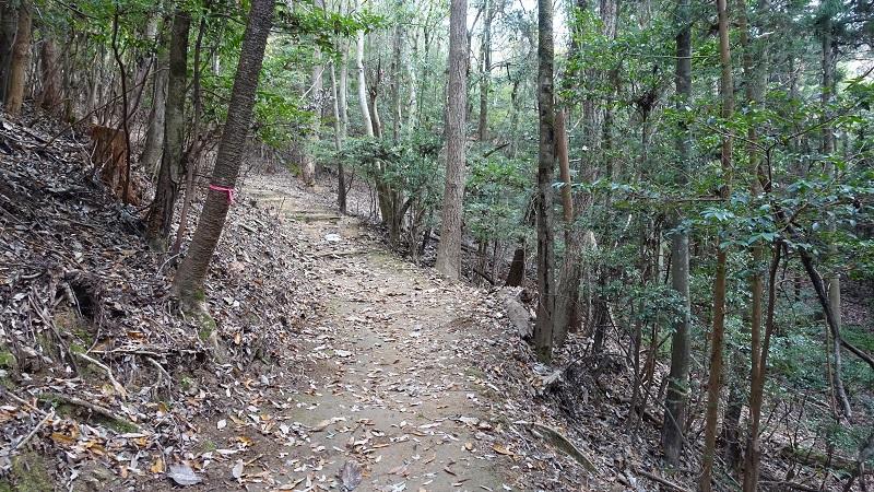 登山道状況2