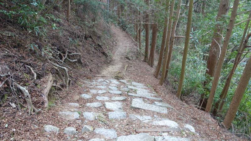 山道へ変化